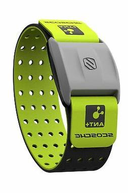 Scosche Rhythm+ Heart Rate Monitor Armband - Green - Optical